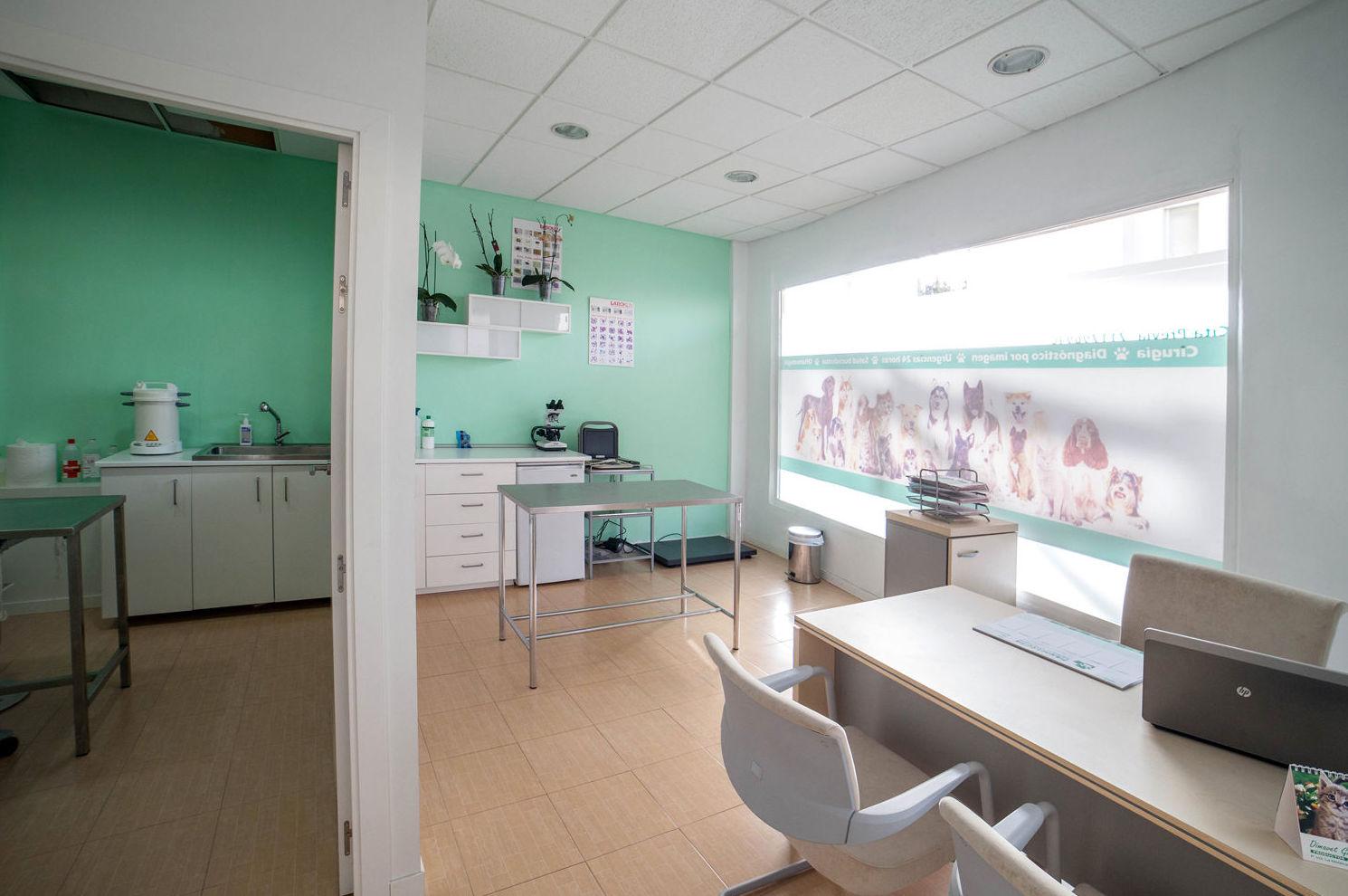 Veterinario de urgencias en El Ejido