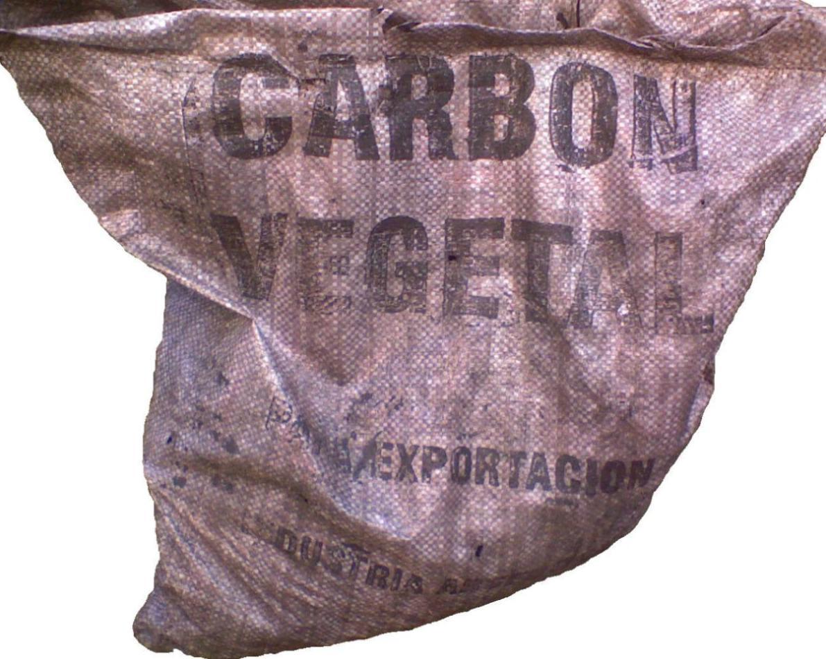 Carbón vegetal sin chispas especial hostelería y empresas