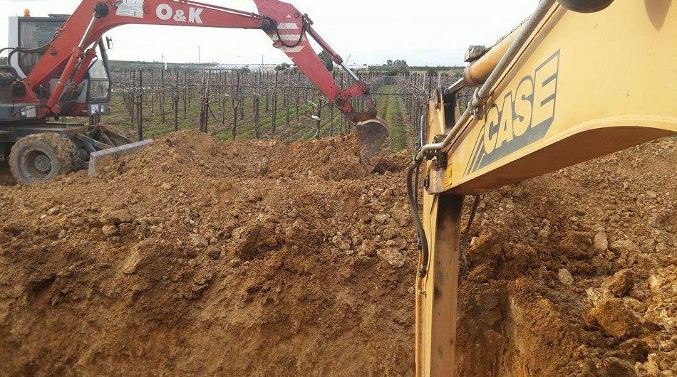 Foto 19 de Excavaciones y movimientos de tierra en Los Palacios y Villafranca | Hermanos Palacios Rincón