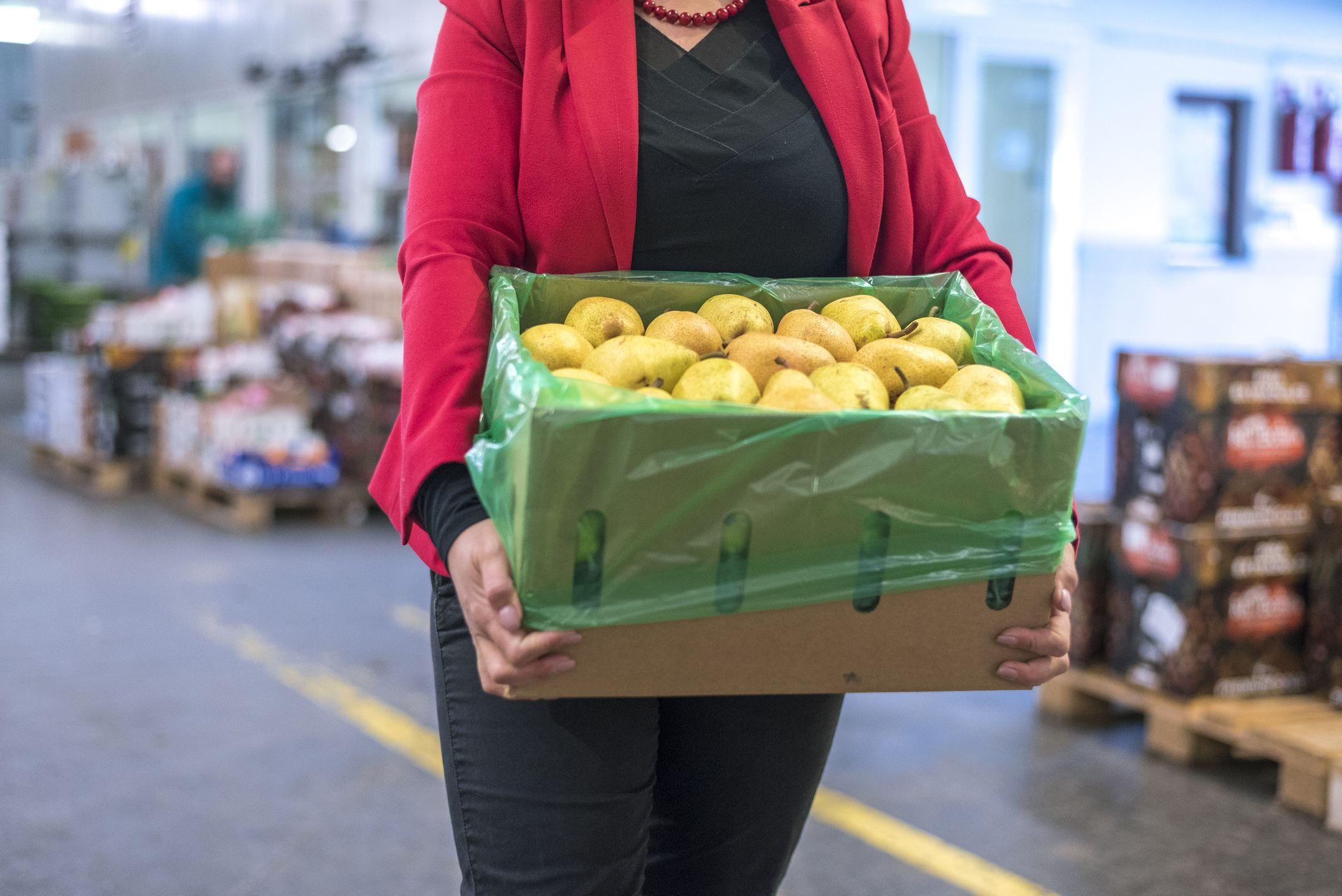Frutas recién cogidas