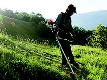 Foto 12 de Máquinas y herramientas de jardinería en  | Forestal Agrícola