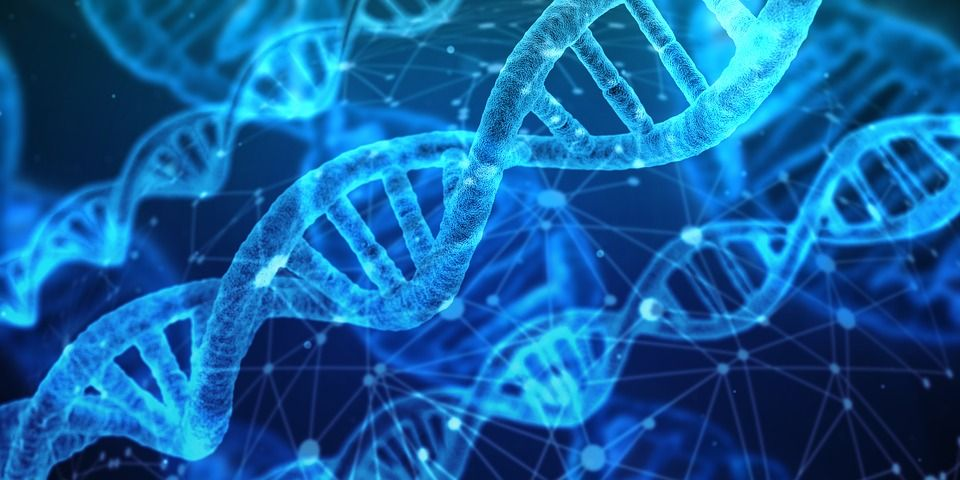 Test genético: Tratamientos de Aurea Esthetic