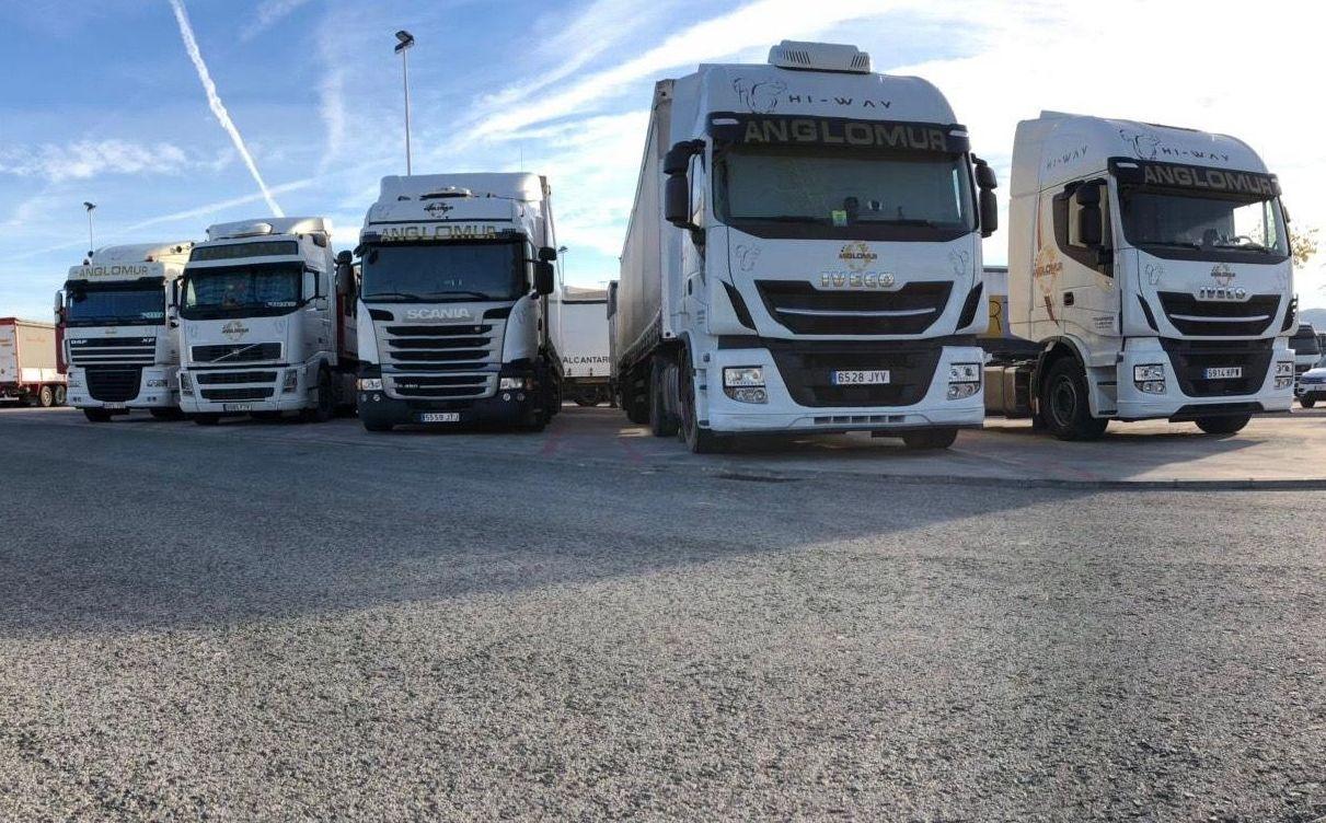 Foto 2 de Transporte de mercancías por carretera en Alcantarilla | Transportes Anglomur, S.L.
