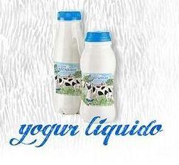 Yogur líquido : Nuestros productos de Lácteos Artesanía