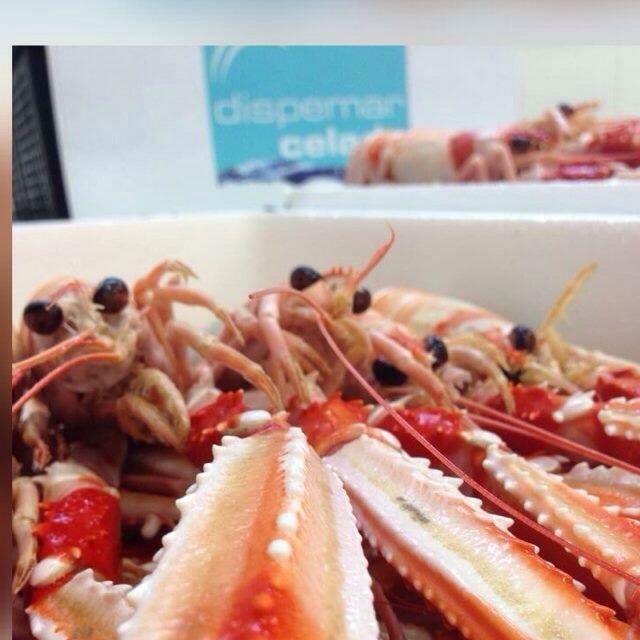 Foto 11 de Distribución de pescados y mariscos frescos y congelados en Madrid | Dispemar Celada
