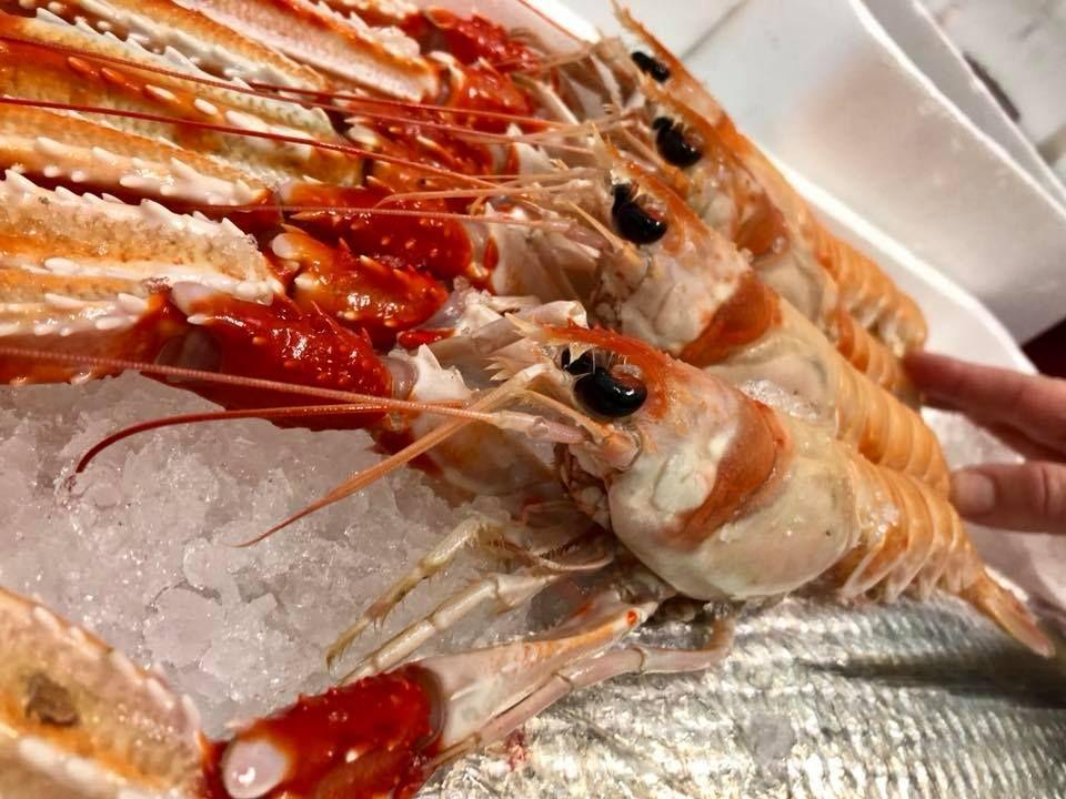 Distribuidor de marisco de calidad en Madrid