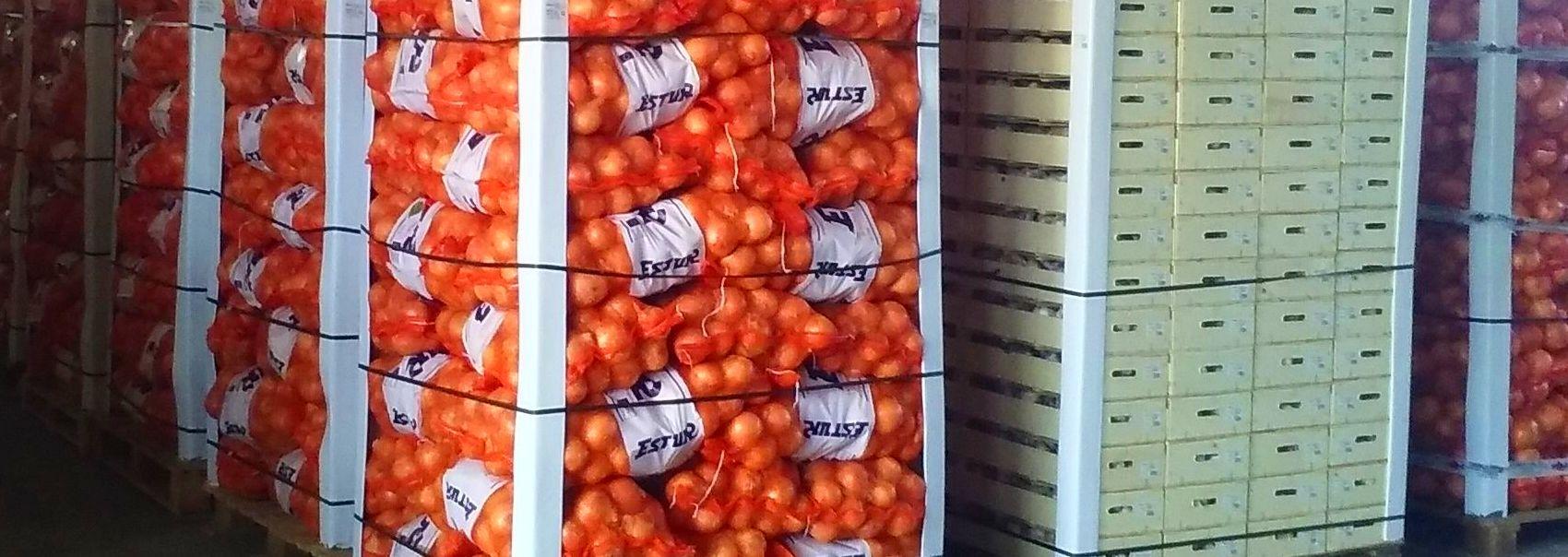 Foto 3 de Frutas y Hortalizas en Dúrcal | Cebestur