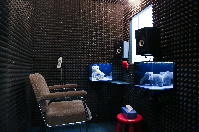 Foto 2 de Audífonos en Madrid | Audiología RV Alfa
