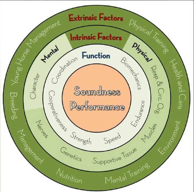 Consultoría: Catálogo de E & C Consulting
