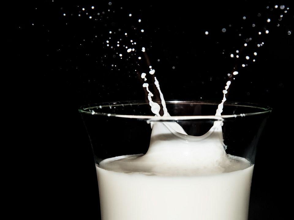 ¿Salud y leche de vaca?