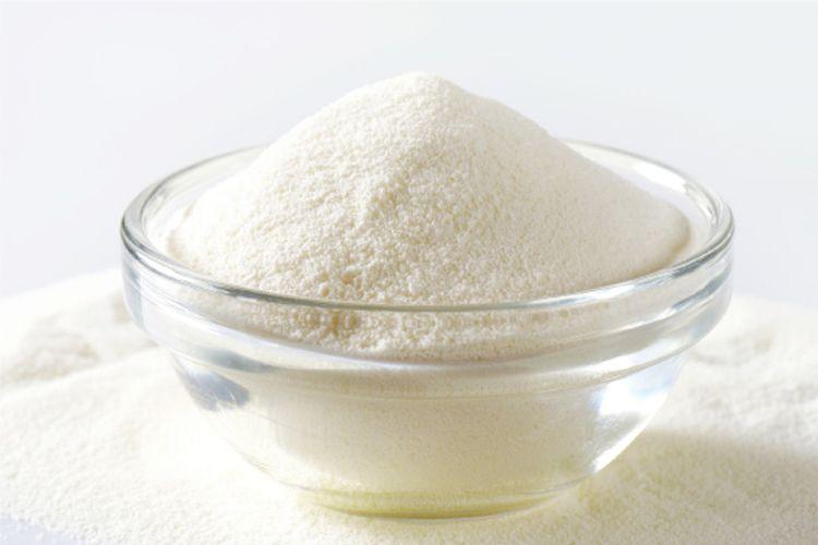 Fabricantes de leche en polvo