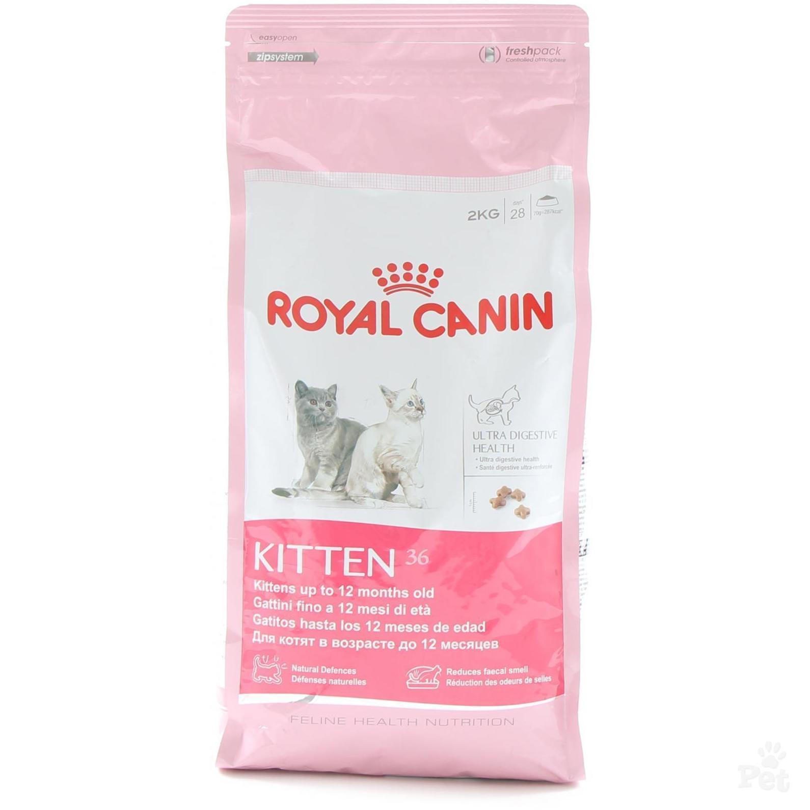 Pienso Royal Canin gatos