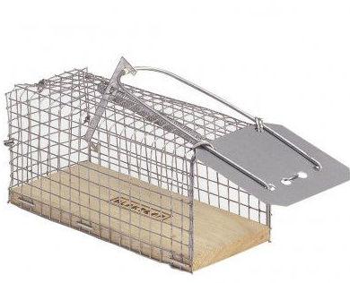 Trampa de ratas