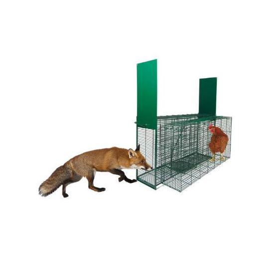 jaula de zorros