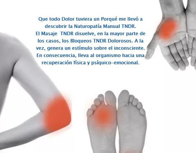 TNDR Pozuelo de Alarcón Madrid