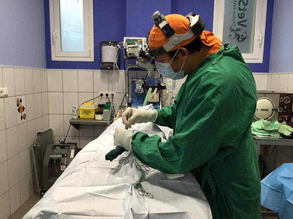 Cirugía y hospitalización en Torremolinos