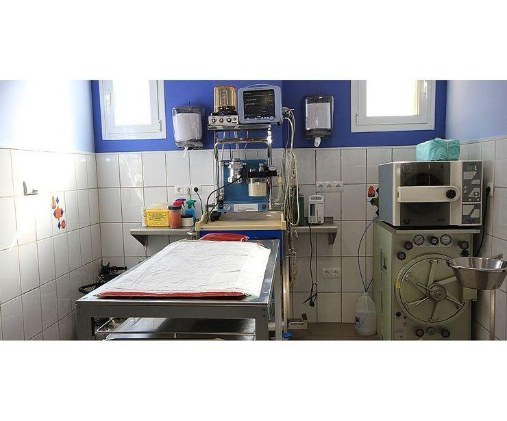 Veterinarios Urgencias en Torremolinos