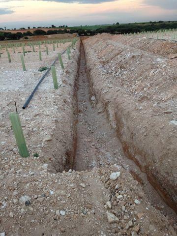Zanjas de riegos para viñas: Servicios de Excavaciones y Derribos Díaz Martínez