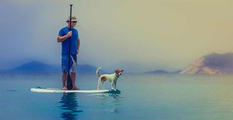 Paddle Surf: Material de Play Riding Shop