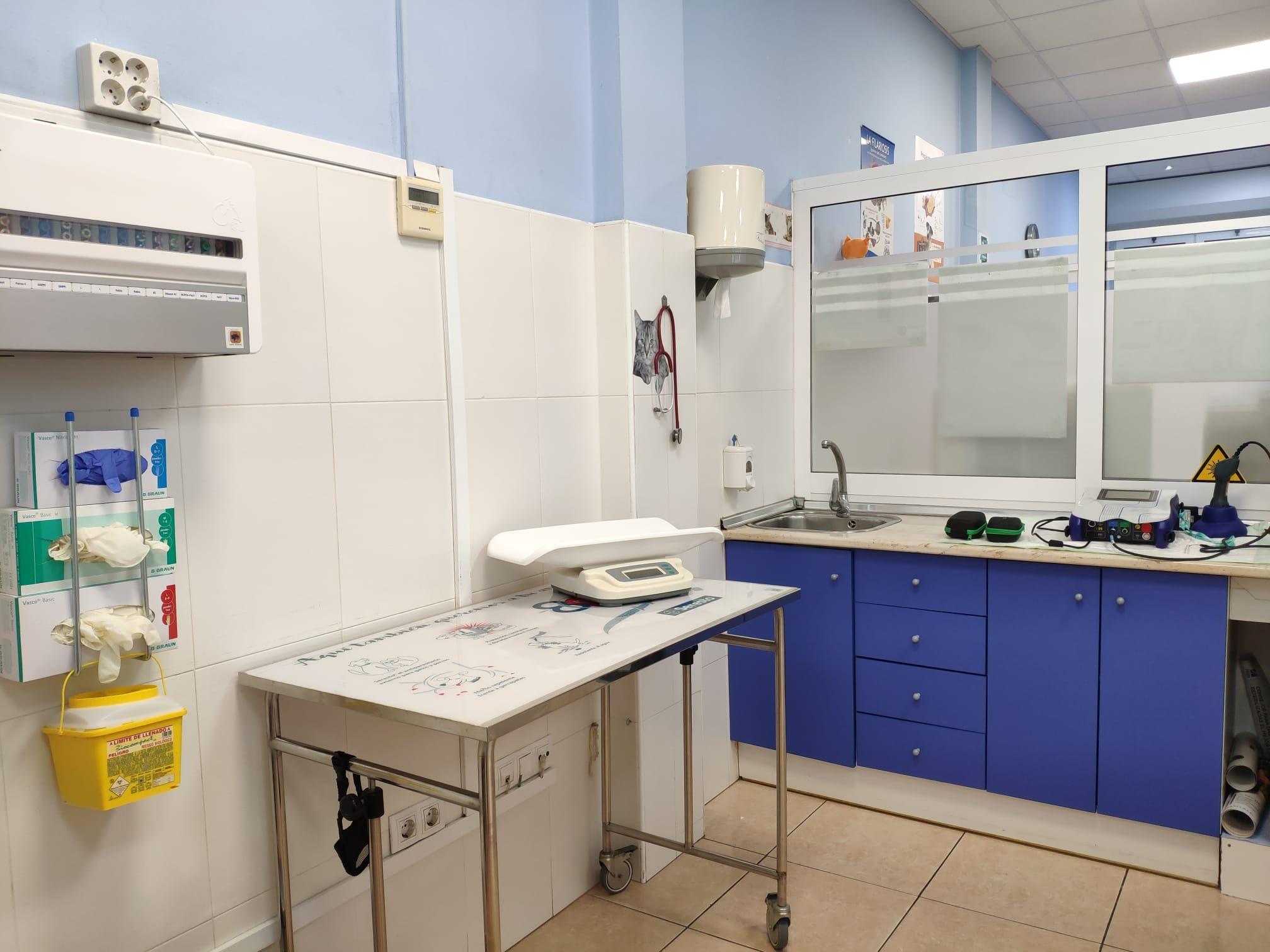 Foto 10 de Veterinarios en Gran Tarajal | Clínica Veterinaria Gran Tarajal
