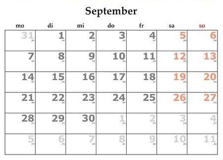 Septiembre: Servicios y Campañas de Clínica Veterinaria Benicalap