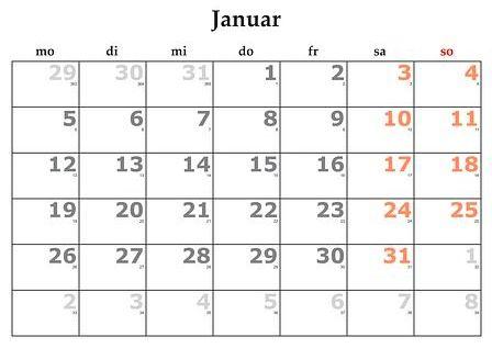 Enero: Servicios y Campañas de Clínica Veterinaria Benicalap