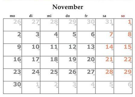 Noviembre: Servicios y Campañas de Clínica Veterinaria Benicalap