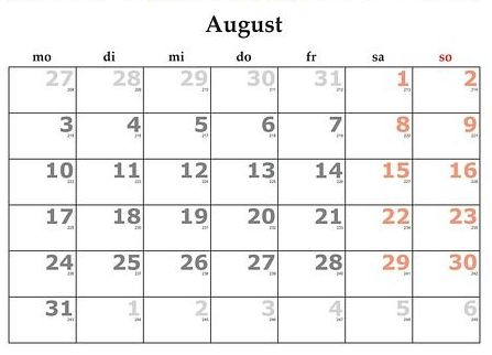 Agosto: Servicios y Campañas de Clínica Veterinaria Benicalap