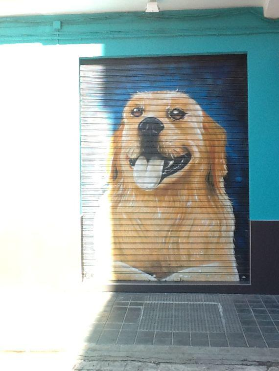 Fachada clínica veterinaria
