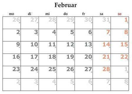 Febrero: Servicios y Campañas de Clínica Veterinaria Benicalap