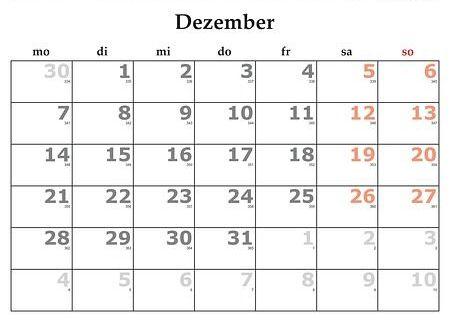 Diciembre: Servicios y Campañas de Clínica Veterinaria Benicalap