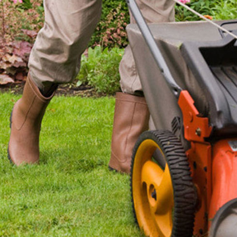 Mantenimiento de jardines: Servicios de Julio Pérez Pérez