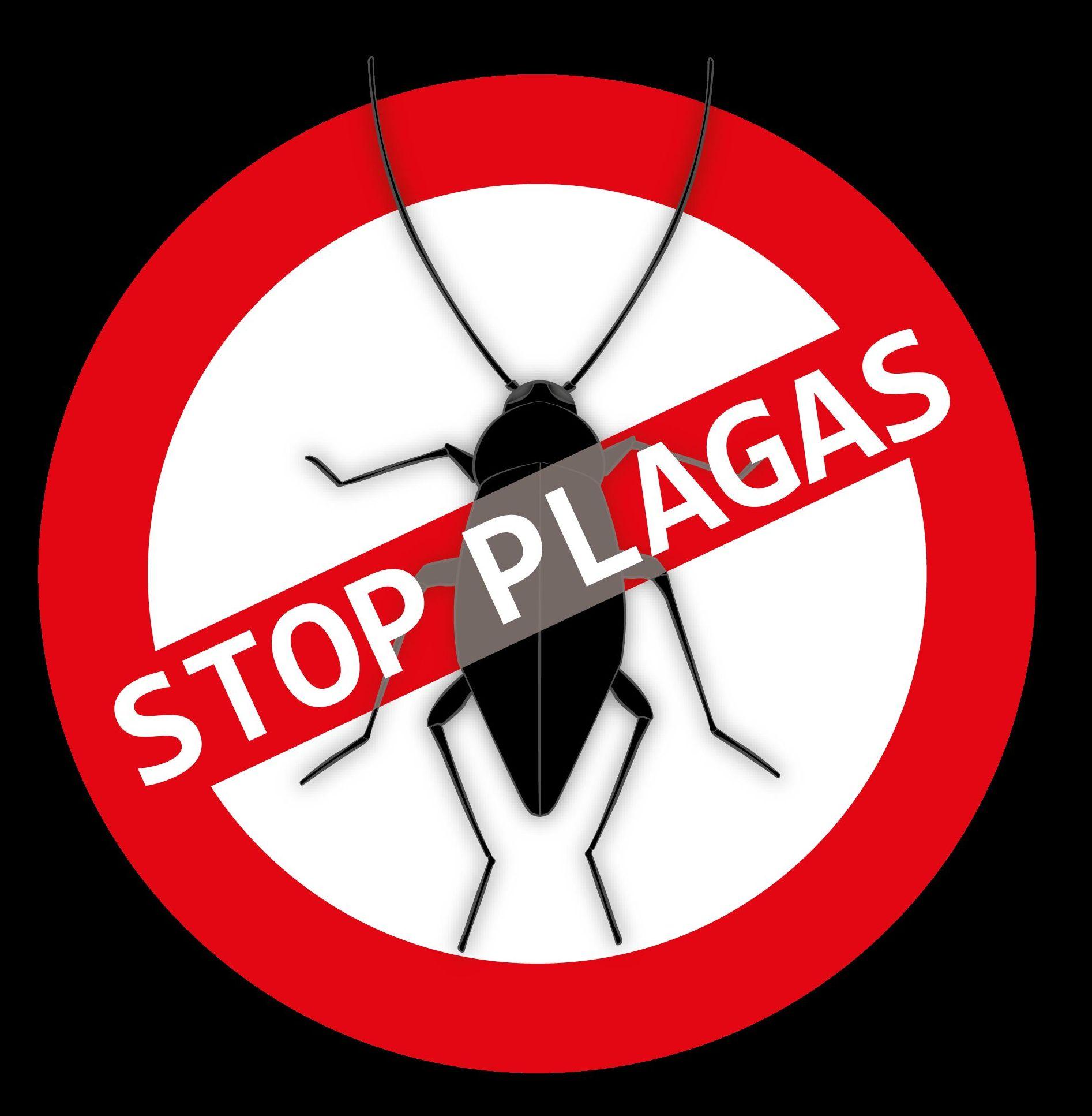 Expertos en combatir plagas