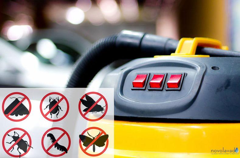 Máquinas para la limpieza de vehículos
