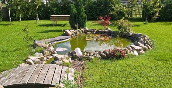 Diseño y mantenimiento de jardines: Servicios de Limpiezas Cruci