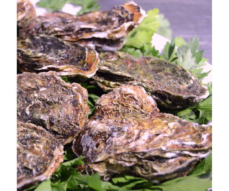 Especialistas en ostras y gambas cocidas