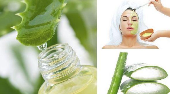 El aloe vera y el acne