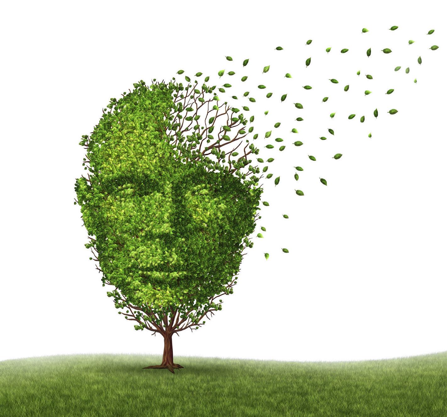 21 de septiembre Día Internacional del Alzheimer