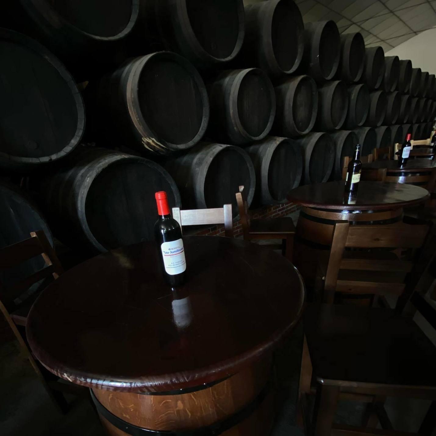 Foto 11 de Venta de vinos en  | Bodegas Los Jumillanos