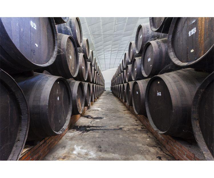 Maduración del vino en barricas
