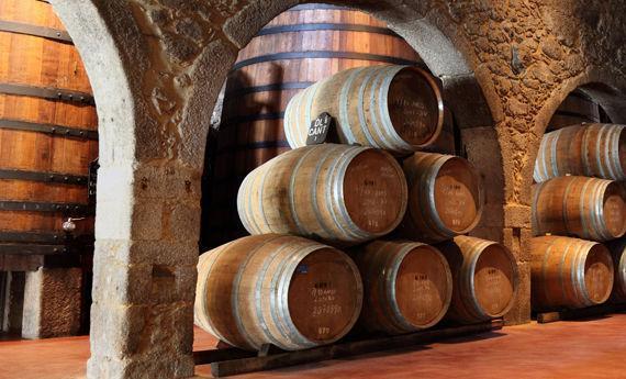 Foto 5 de Venta de vinos en  | Bodegas Los Jumillanos