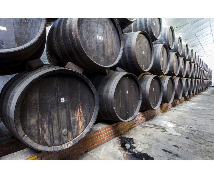 Elaboración tradicional de vinos en Bodegas Los Jumillanos