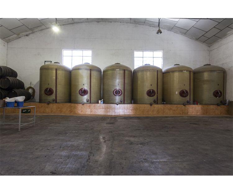Disfruta del vino de la tierra con elaboración artesanal