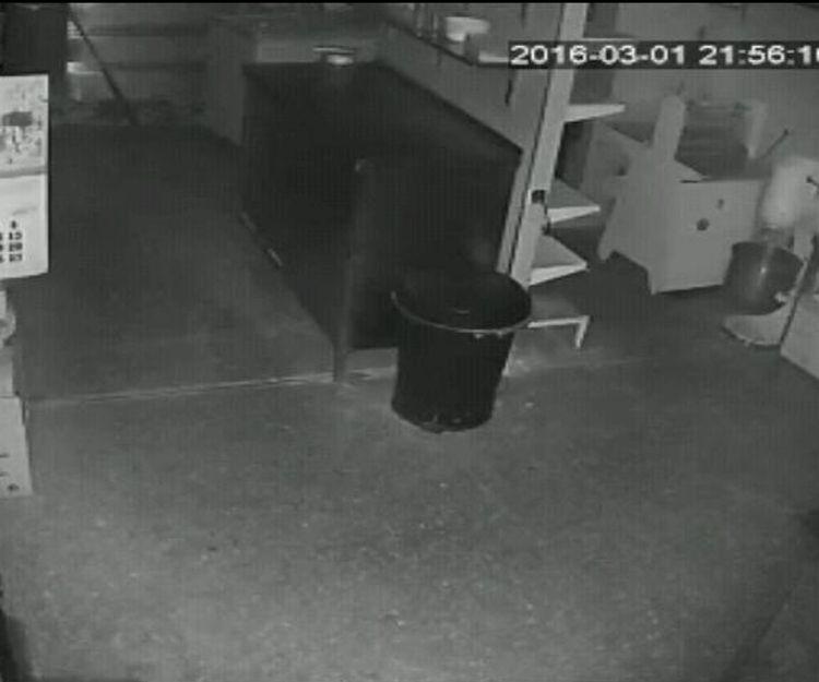 Vigilancia por cámara