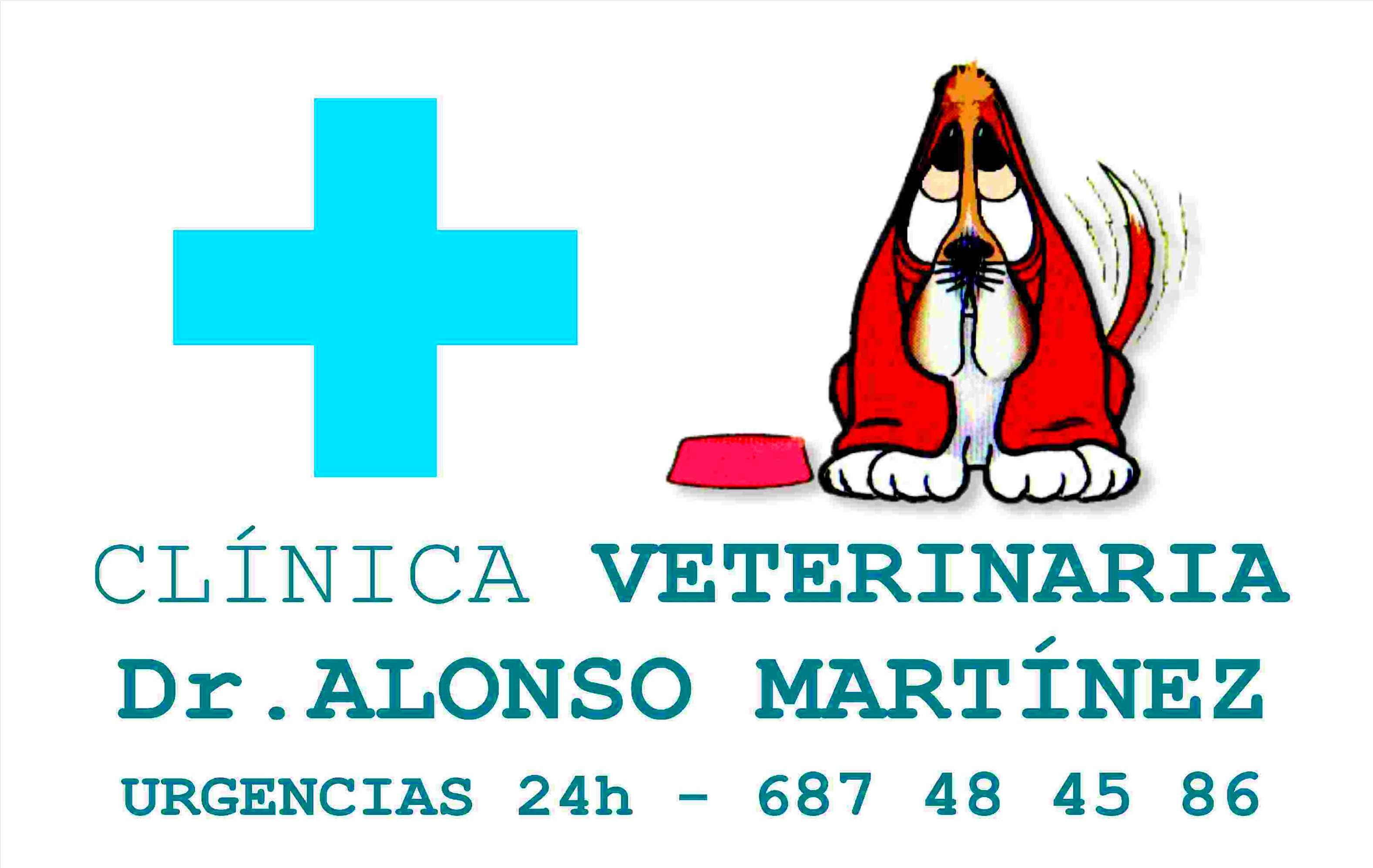 CLINICA VETERINARIA DR.ALONSO MARTINEZ,URGENCIAS 24 HORAS 687484586