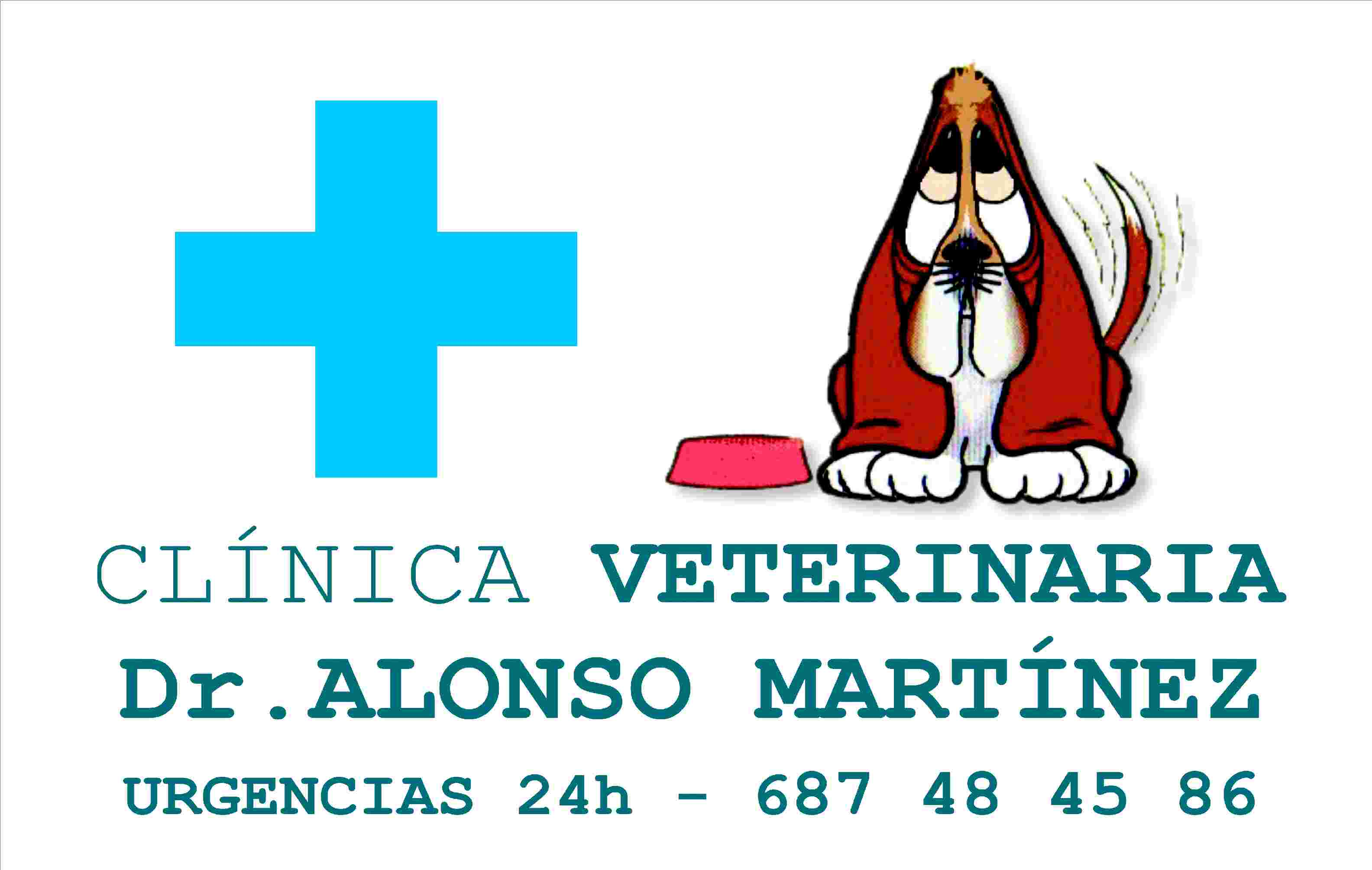 Foto 69 de Veterinarios en  | Clínica Veterinaria Dr. Alonso Martínez