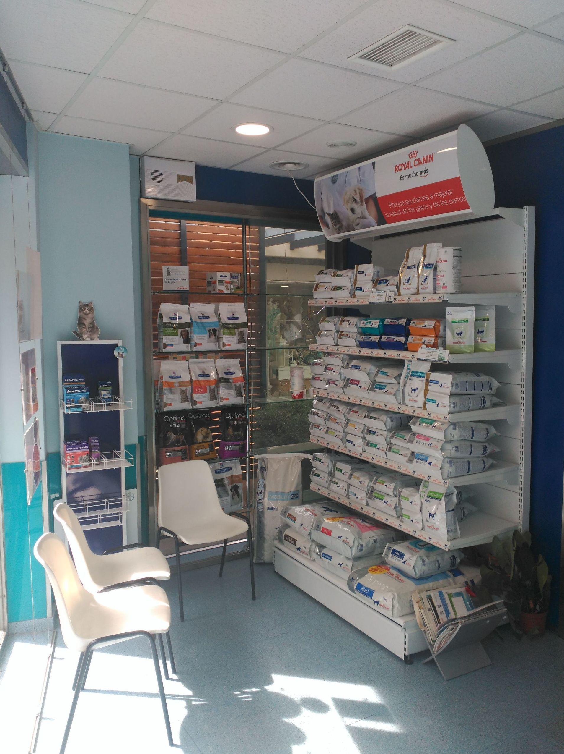 Foto 2 de Veterinarios en Granada | Clínica Veterinaria Alhambra