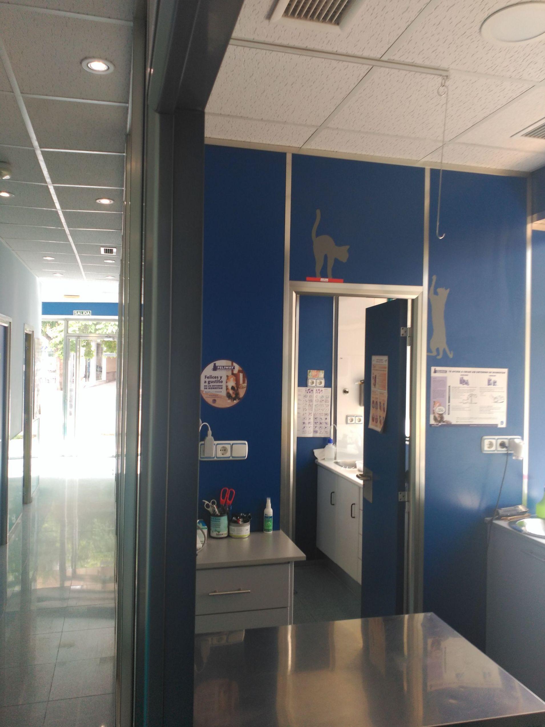 Foto 4 de Veterinarios en Granada | Clínica Veterinaria Alhambra