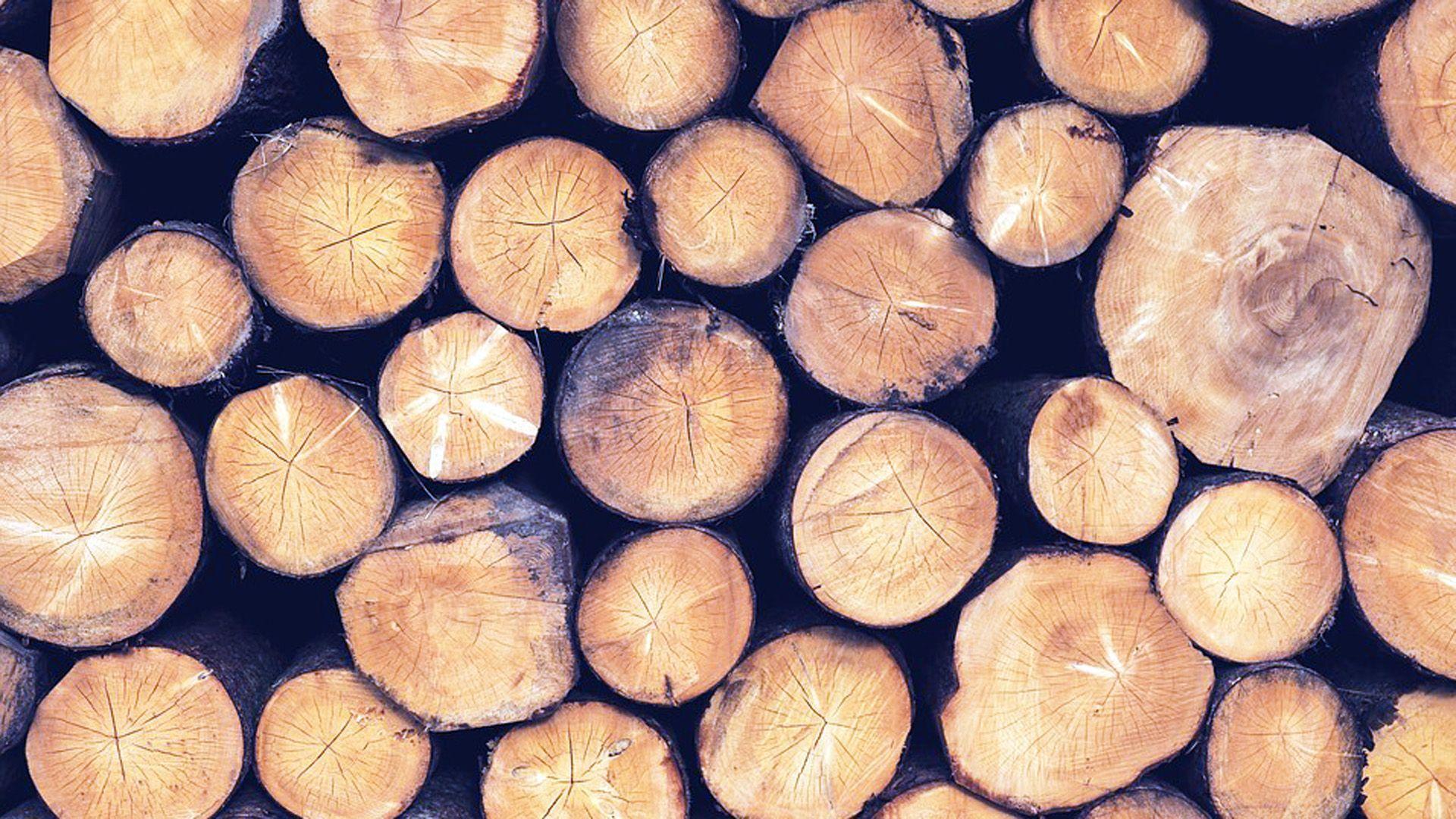 Transporte de madera en Baleares